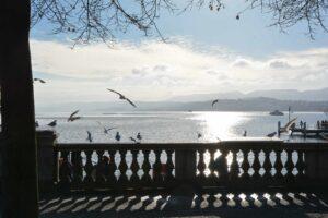 Über der reflektierenden Seefläche segeln Möwen. Der kontrastreiche Vordergrund wird von einer Balustrade gebildet, die ein bewegtes Schattenmuster auf den Weg wirft.